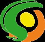 Logo StradeGiovani aps